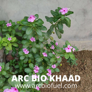 ARC BIO KHAAD (9).png