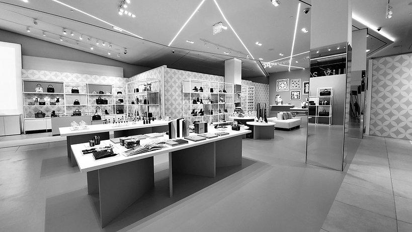 Louis Vuitton copy WEB GRAY.jpg