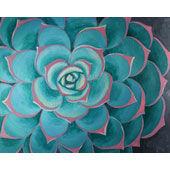 16 canvas Succulent.jpg