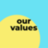 our values.png