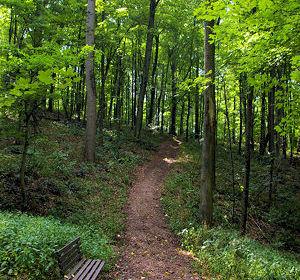 nrvt_trail_section_danbury_06.jpg