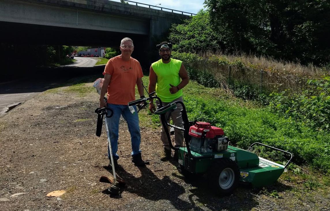 Knotweed Cleanup Volunteers