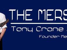 The Merseybeats Banner