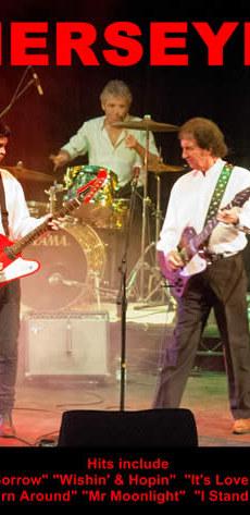Merseybeats Live 2