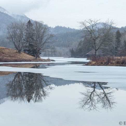 Little Long Pond in Spring.