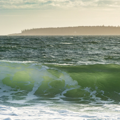 Wonderland Wave.