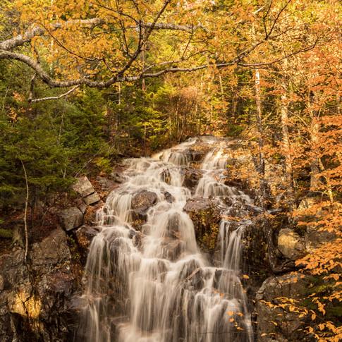 Fall at Hadlock Falls.