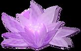 lotus-fantasy.png