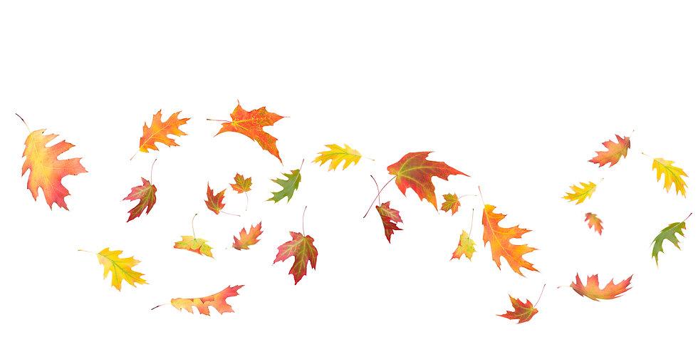Thanksgiving Day Celebration - Post Oak