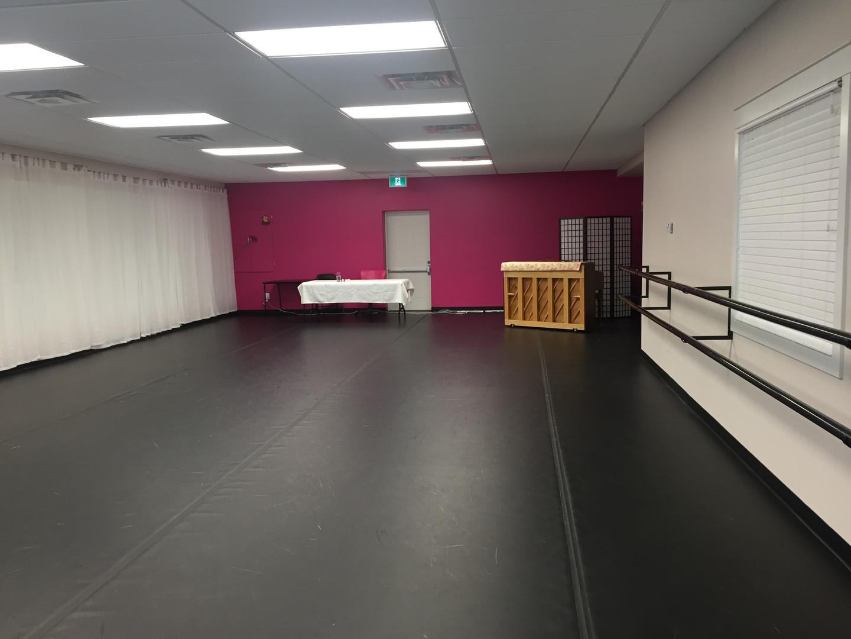 Pink (large) Studio