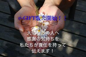 flower-22656_1280.jpg