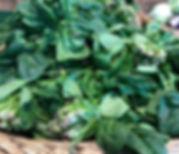 Bottes d'épinards