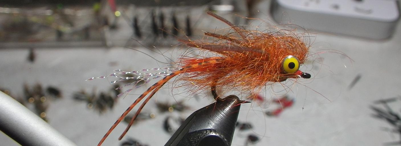 Allen_Carp Fly