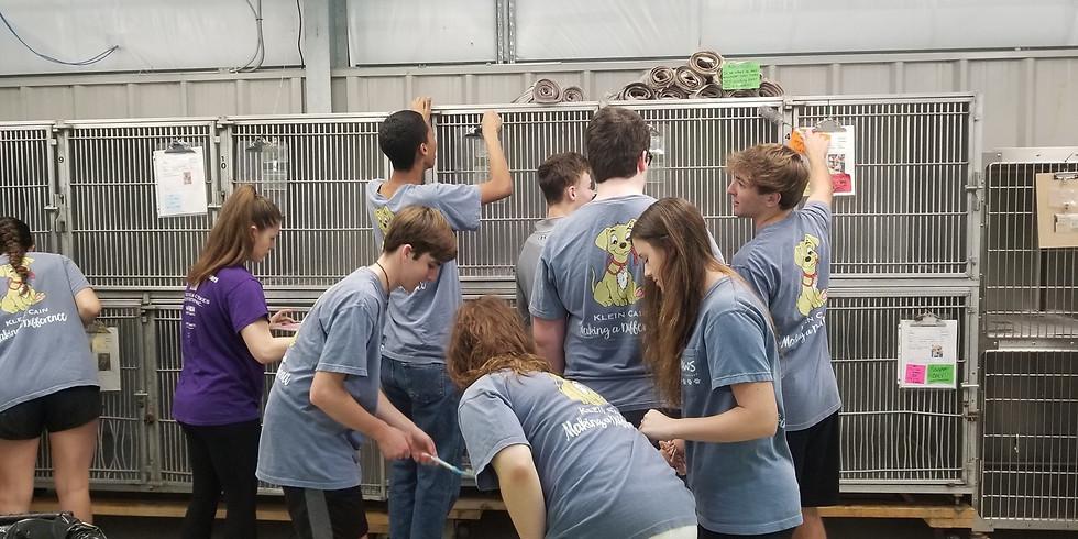 AAR Volunteer Day - Special Project