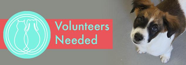 VolunteersNeeded.png
