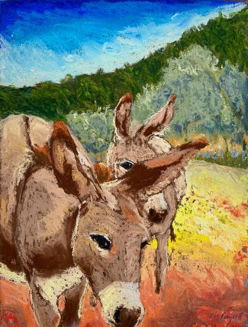 Mountain Donkeys