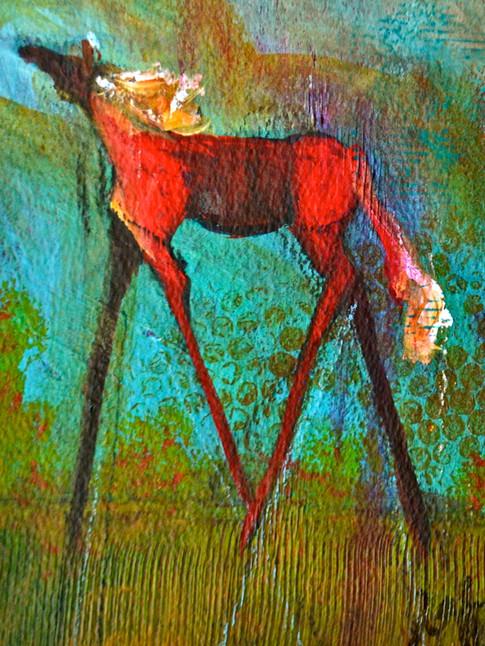 'Painted Pony'