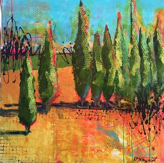 Wayside Cypress.jpg