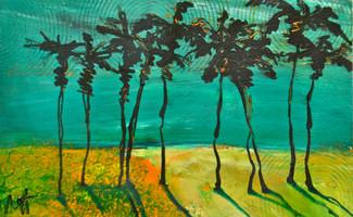 'Desert Palms'