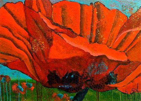 'Backyard Poppy I'