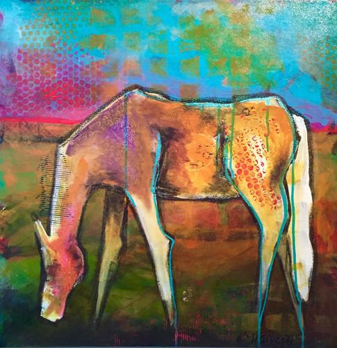'White Horse at Sunrise'