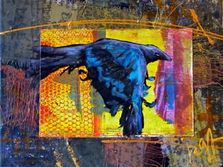 'As The Crow Flies'