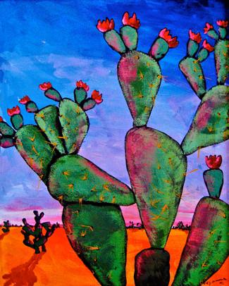 'Desert Evening Glow'