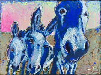 Donkey Blues
