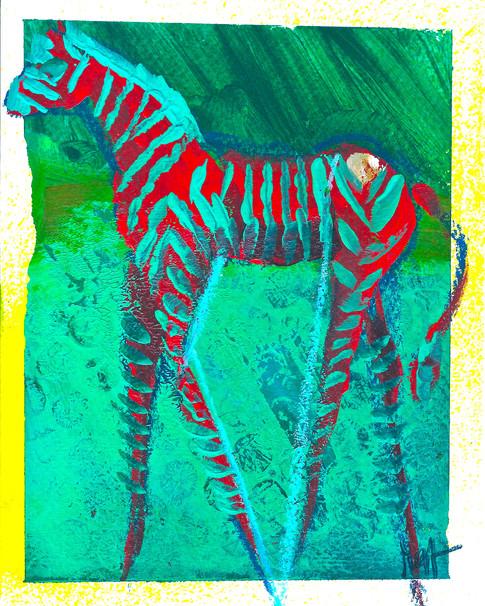 'Zebra Stripes'