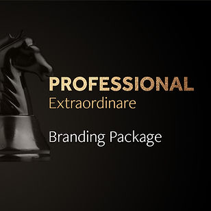00BrandingPackages_Professional.jpg