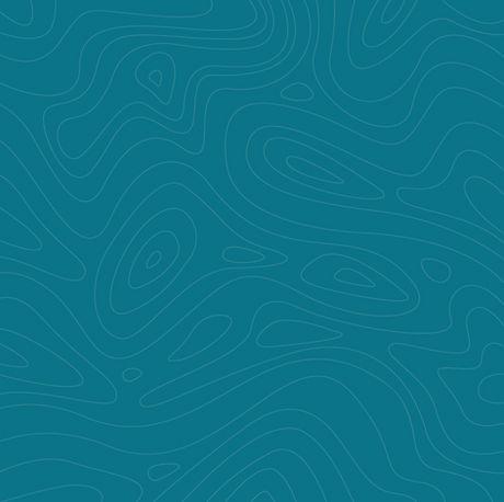 Geeco-background-blue_edited_edited.jpg