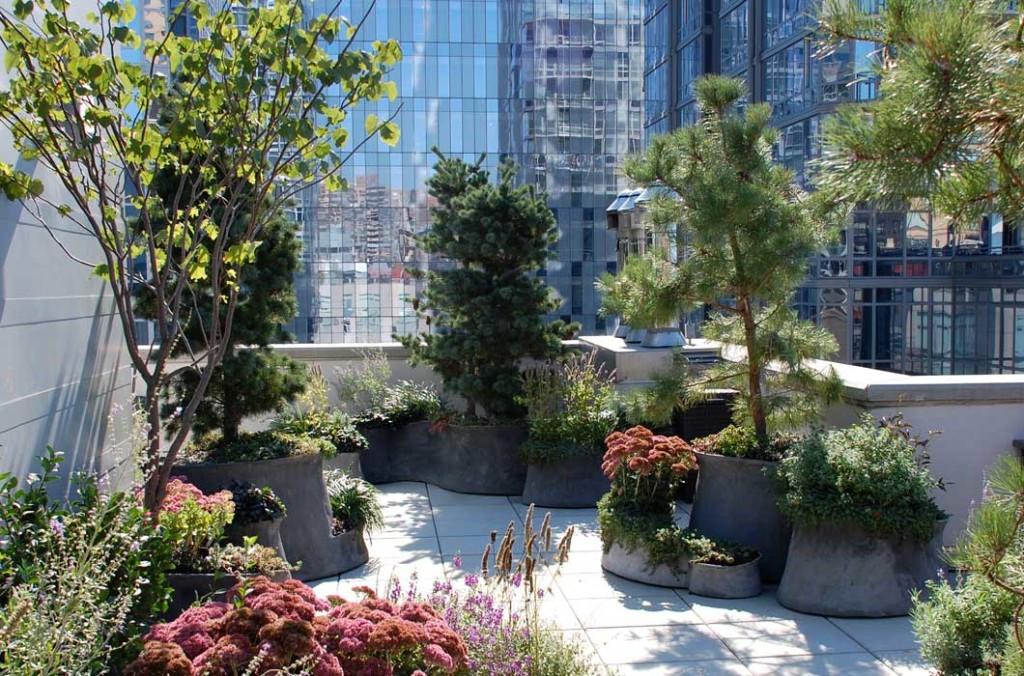 city-terrace-1-1024x676.jpg