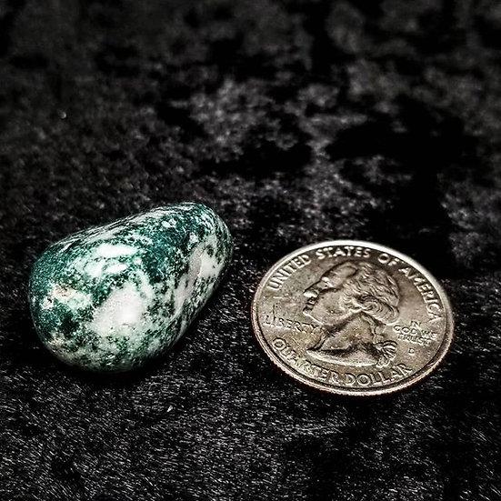 Pocket Stone - Tree Agate