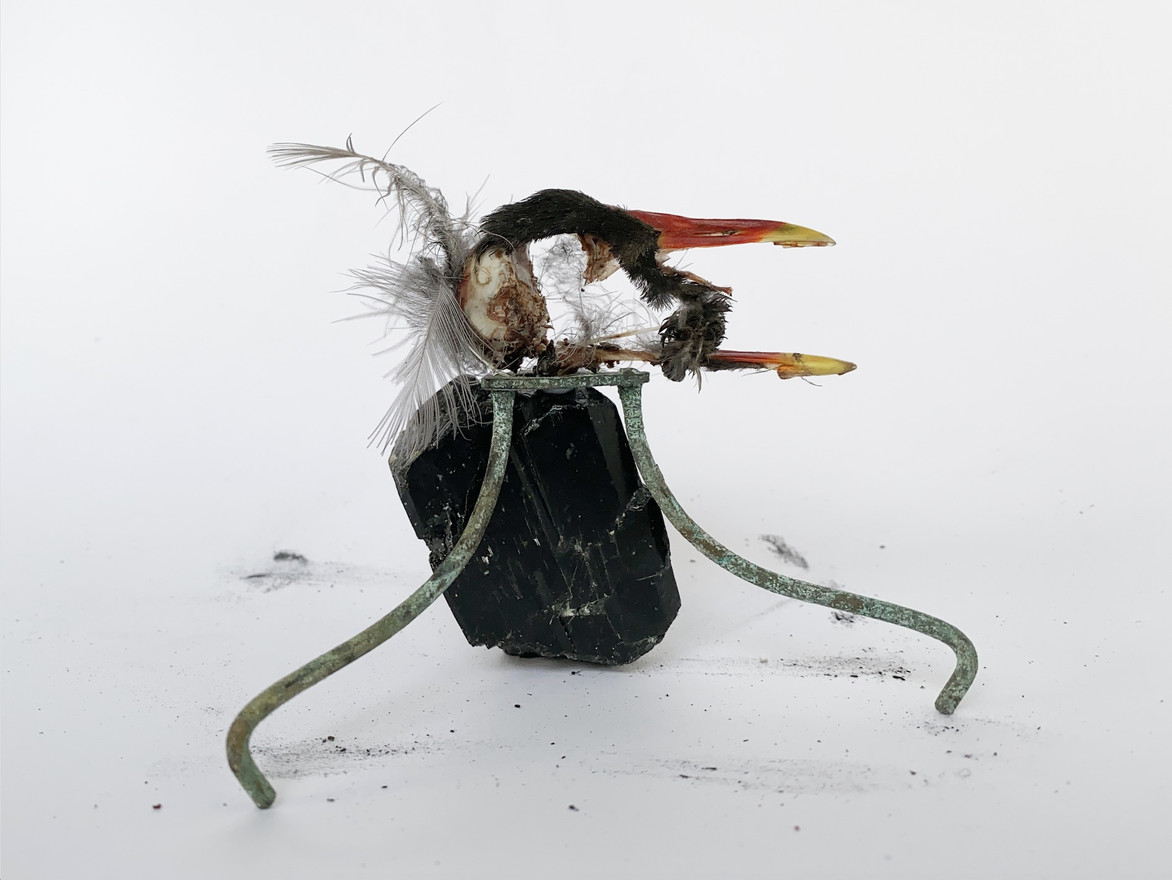 Swallower of Sinners, 2020 Moorhen skull, organic material, copper, black tourmaline 9 x 11 x 5cm