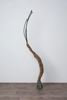 Jacob's Ladder,  2019 Liana (woody vine), tin, charred branch, concrete, pigment 156 x 35 x 15cm