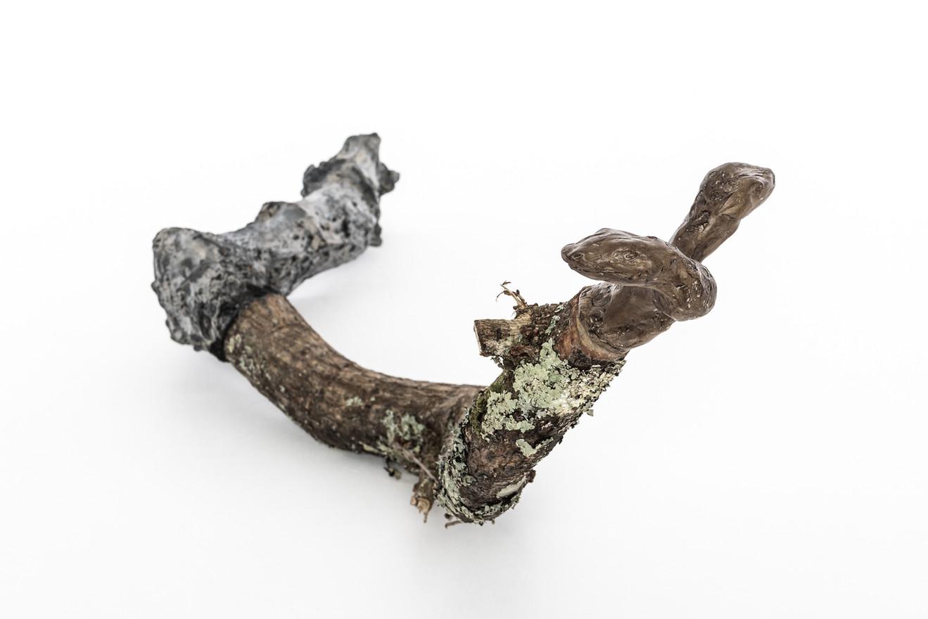 Totem VII  (2 headed snake ), 2019 Unfired clay, wax polish, oak tree branch, cement, pigment, lichen  80cm x 25cm x 35cm