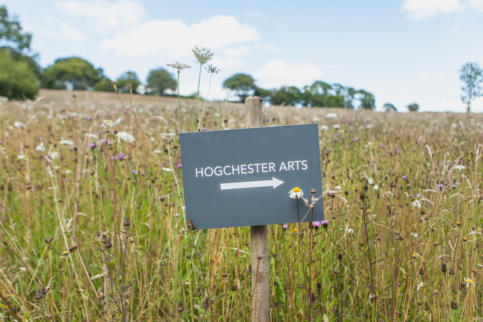 Hogchester Arts Exhibition