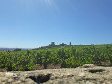 chateauneuf vue du nord