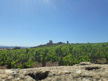 chateauneuf vue nord