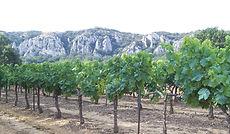La montagne de St Genies_