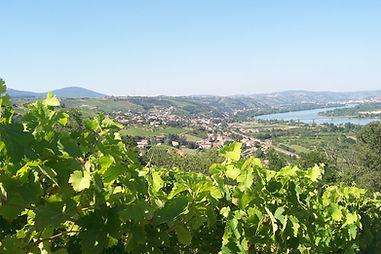 Chavanay et le Rhône
