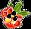 Ackee&Okra Image Logo - transparent.png