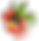 Ackee & Okra Logo