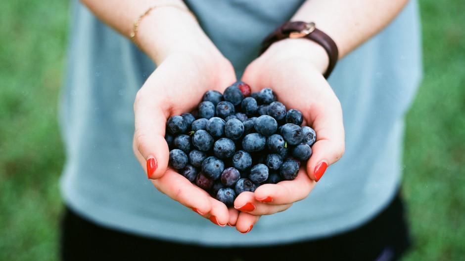 Blueberry Bonanaza