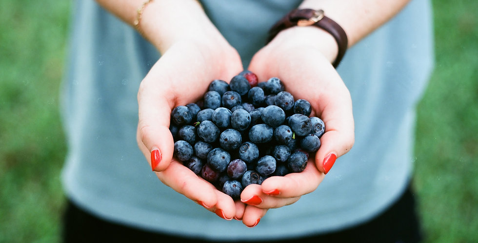 Blueberry Wax Melt