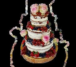 cake_edited_edited.png