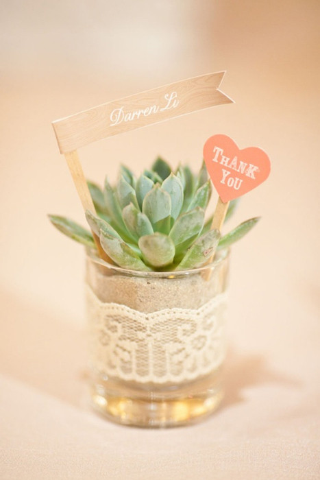 Potted Plant - Intimate Weddings