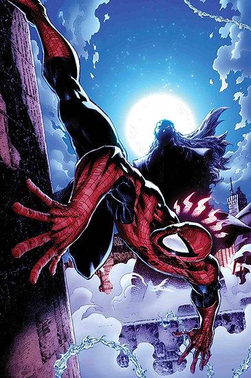 PETER PARKER SPECTACULAR SPIDER-MAN #311 (75960608814031111)