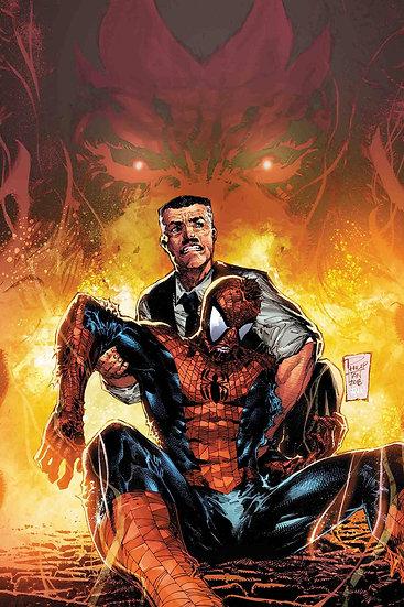 PETER PARKER SPECTACULAR SPIDER-MAN #312 (75960608814031211)