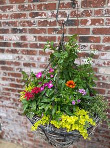 June nest hanging pot.jpeg